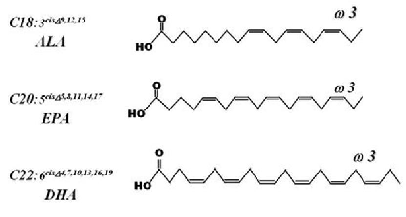 omega-3c