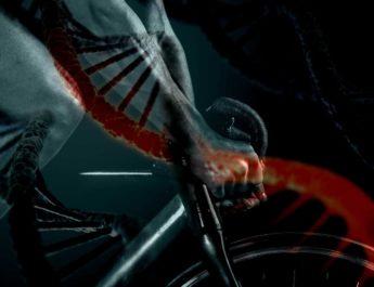 Esercizio Fisico e Patologie Croniche: Aspetti Genetici